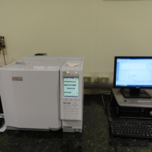 Cromatógrafo CG-FID-2010